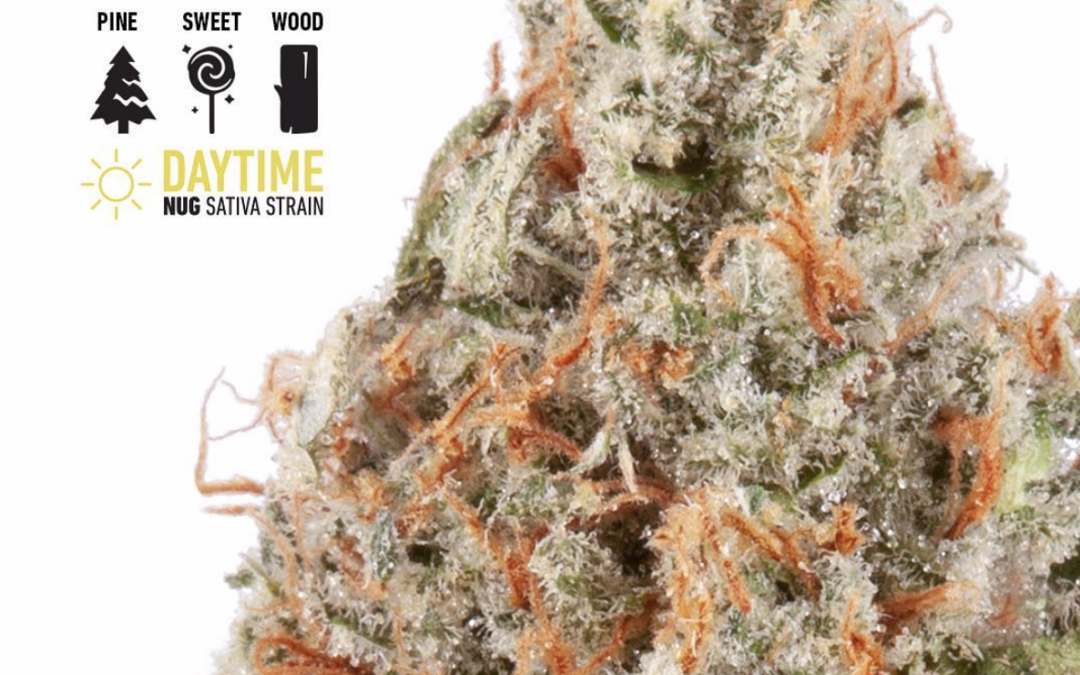 Jack Herer by Nug review